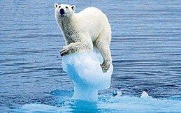 10 Environmental Problems | CSGlobe