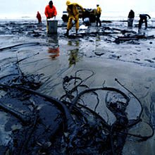 Environmental impact of the petroleum industry - Wikipedia