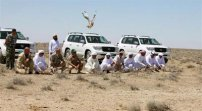 Environmental Issues in Western Sahara | Sahara Resources