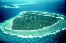 Environmental issues with coral reefs - Wikipedia