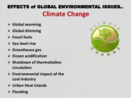 Global-environmental-issues-terraissues - Terra Issues