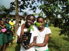 Green Cameroon | Environmental Protection