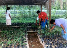 Made in Central America: Environmental Organizations in Panama