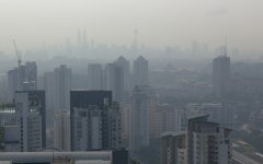 Environmental Problems of Urbanization
