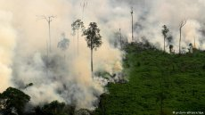 Forest fire on Sumatra (picture-alliance/dpa)