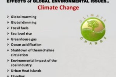 Major environmental Problems in developing countries